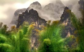 Karst Formations and Bamboo near Guilin